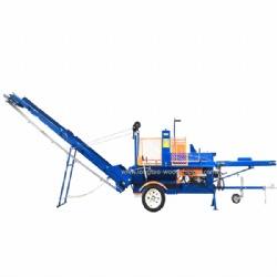 TUV CE Gasoline Powered Firewood Processor With Optional Lifter For Sale